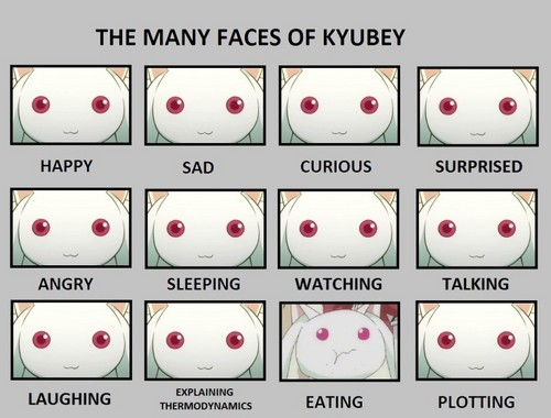 The Many Faces of Kyubey