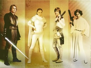 The Skywalker Family