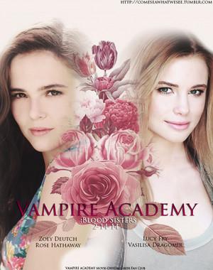 The VA Blood Sisters