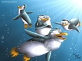 Underwater guys :3 - penguins-of-madagascar fan art
