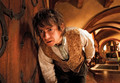 bilbo - the-hobbit-an-unexpected-journey photo
