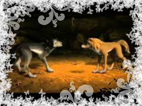 Alpha and Omega 2: a howl-iday adventure Hintergrund entitled humphery and kate getting things things in order