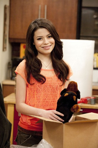 Miranda Cosgrove wallpaper with a sign entitled iCarly