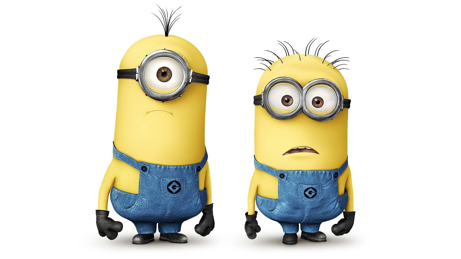 Http Www Fanpop Com Clubs Despicable Me Minions Images 35344016 Title Minion Wallpaper