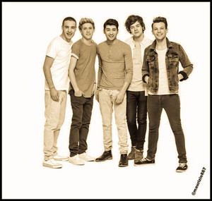 one direction 2013,