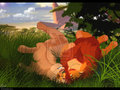 paradise - the-lion-king photo