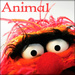 ★ Animal ☆  - the-muppets icon