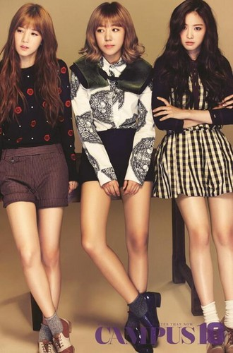 Korea Girls Group A Pink wallpaper containing a hip boot called A Pink for 'Campus10'
