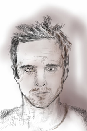 Aaron Paul: Jesse
