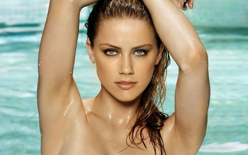 amber heard wallpaper probably with a bikini, skin, and a portrait titled Amber wallpaper