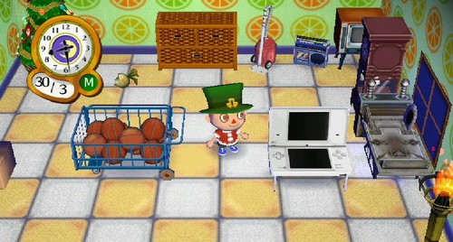 Animal Crossing City Folk How To Get A Dog