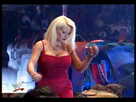 Former WWE Diva & Miss TNA... Kathy Dingman achtergrond possibly containing a concert and a portrait called BB - Armadgeddon 1999