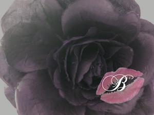 Baronesques Logo