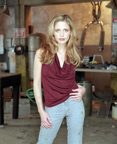Buffy Summers hình nền entitled Buffy Summers Season 6 Promos