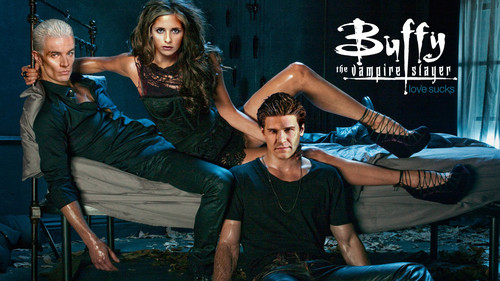 Buffy the Vampire Slayer wallpaper entitled Buffy Vampire Diaries V4 Wallpaper 1080p HQ