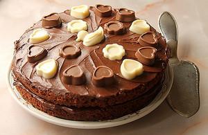 초콜릿 cake