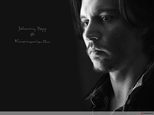 photos - Page 35 Cool-JD-wallpapers-johnny-depp-35460696-500-375