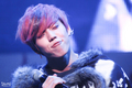 Dongwoo XD  - infinite photo