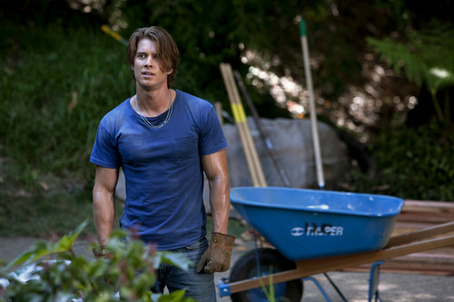 Drew busje, busje, van Acker achtergrond containing a barrow entitled Drew as Jason DiLaurentis