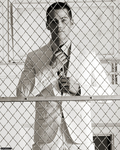 Dylan O'Brien fond d'écran with a chainlink fence titled Dylan O'Brien