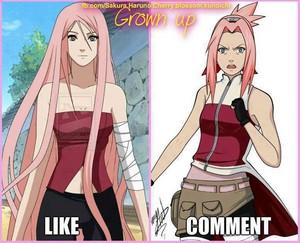 Grown-Up Sakura