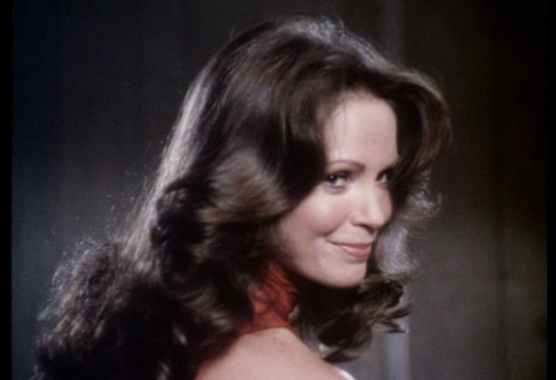 Charlie's Angels 1976 wallpaper containing a portrait and attractiveness entitled Kelly Garrett