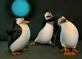 Kowlaski Bieng mean to Rico:( - penguins-of-madagascar photo
