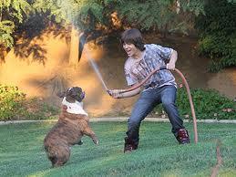 Leos cucciolo Amore :)