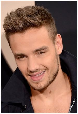 Liam Payne 2013