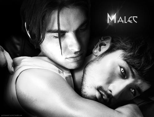 Alec & Magnus fondo de pantalla called Malec