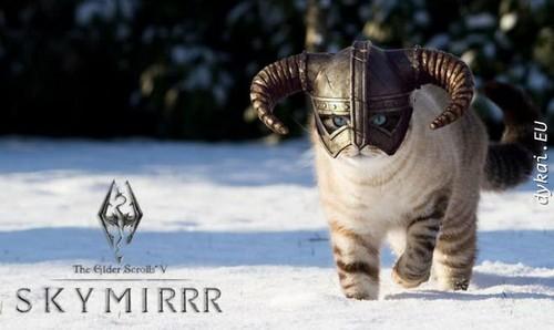 Elder Scrolls V : Skyrim wallpaper called Mrmiouw