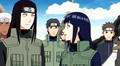 Neji and Hinata shippuden
