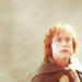 Pippin - merry-and-pippin icon