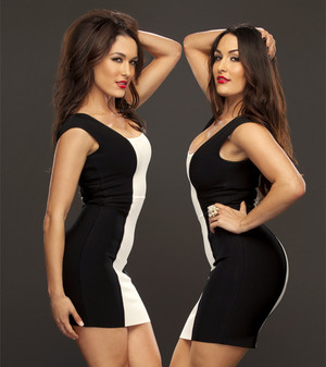 Pretty Evil Things: The Bella Twins