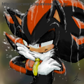 Rain Go Away - shadow-the-hedgehog photo