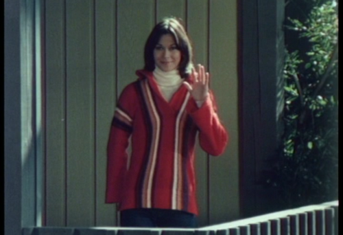 Charlie's Angels 1976 wallpaper probably containing an outerwear, a box coat, and a well dressed person called Sabrina