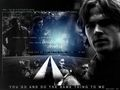 Sam/Dean - wincest wallpaper