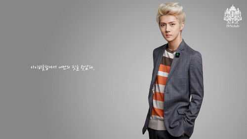 EXO-K fondo de pantalla containing a well dressed person, a suit, and a business suit called Sehun