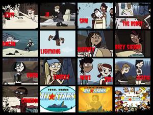 TDAS Collage