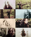 THG - the-hunger-games fan art