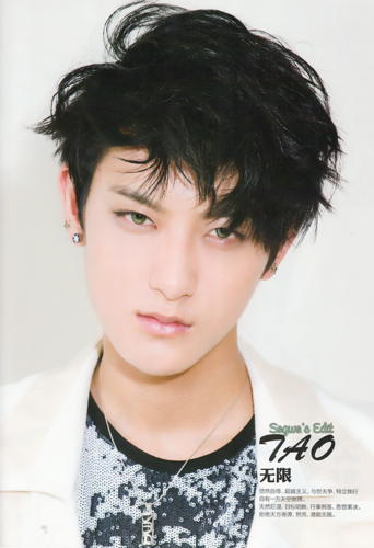 Tao 壁紙 possibly with a portrait called Tao!<3
