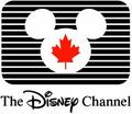 The Disney Channel Canada logo (1988-1997 - disney-channel photo