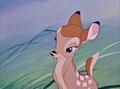 Walt Disney Screencaps - Faline