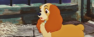 Walt Disney Screencaps - Lady