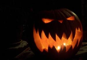 ferocious pumpkin, boga