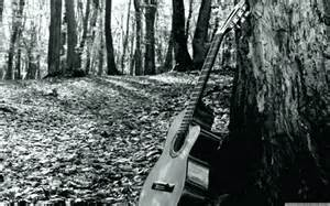 đàn ghi ta, guitar