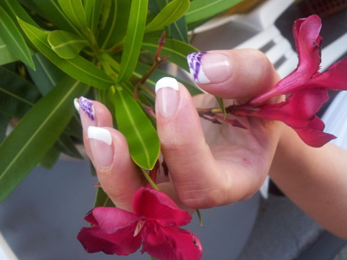 指甲,美甲 壁纸 containing a bouquet, a camellia, and an oleander entitled <3 nails <3