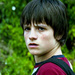 ★ Bridge To Terabithia ☆  - bridge-to-terabithia icon
