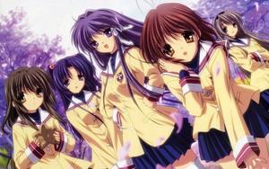 ✧Clannad✧(Girls)