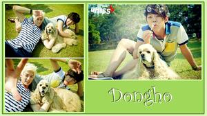♣ Dongho ♣